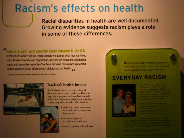 Center-for-Healing-Racism-Race-Are-We-So-Different-Exhibit-10