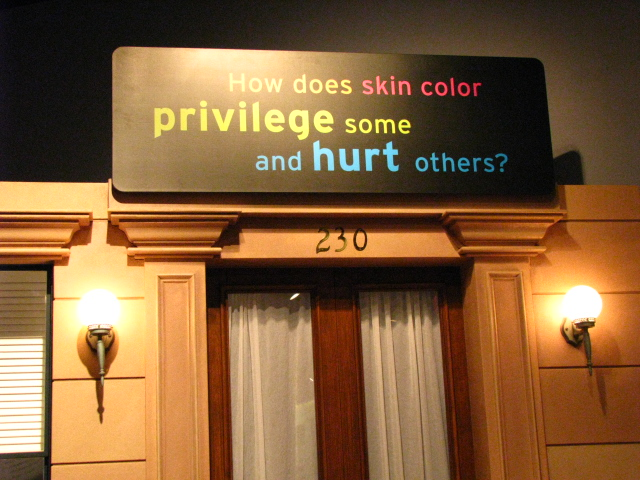 Center-for-Healing-Racism-Race-Are-We-So-Different-Exhibit-17