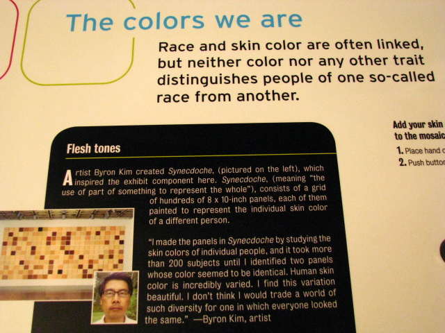 Center-for-Healing-Racism-Race-Are-We-So-Different-Exhibit-18